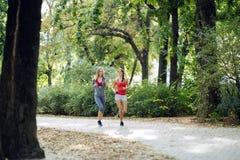 2 красивых женщины jogging в парке Стоковые Изображения RF