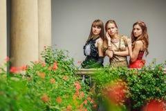 3 красивых молодой женщины в платьях вечера Стоковая Фотография