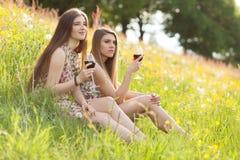 2 красивых молодой женщины на пикнике Стоковые Фотографии RF