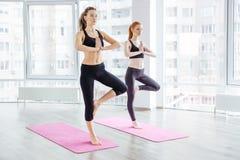 2 красивых молодой женщины практикуя йогу Стоковое Фото