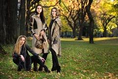 3 красивых молодых модели в одеждах осени элегантных представляя на Central Park Стоковые Фотографии RF