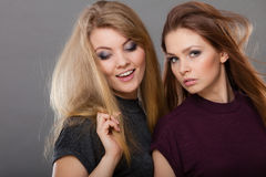 2 красивых представлять женщин, блондинкы и брюнет Стоковое Изображение