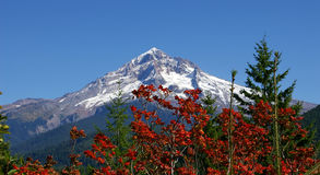 красит гору Стоковая Фотография RF