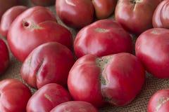 красит желтый цвет томатов heirloom красный стоковая фотография