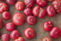 красит желтый цвет томатов heirloom красный стоковые изображения rf