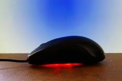 красит мышь стоковая фотография