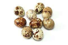 красит различных триперсток картин яичек Стоковые Изображения RF
