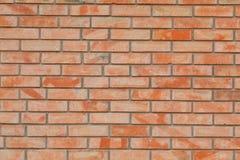 Красит стену кирпичей Стоковое Изображение RF