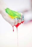 краска кулачка Стоковые Изображения RF