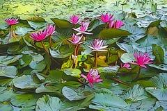 Краска масла лилии красной воды, художнического изображения Стоковое Фото