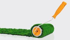 Краска с травянистым роликом краски Стоковые Изображения RF