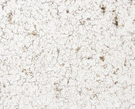 Краска шелушения на белой текстуре стены Стоковое Изображение