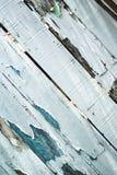 Краска шелушения на выдержанной древесине Стоковое Изображение RF