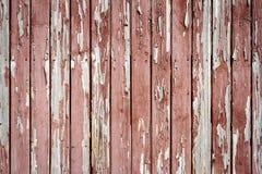 Краска Pelling на древесине Стоковые Фотографии RF