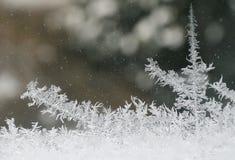 краски заморозка Стоковые Изображения