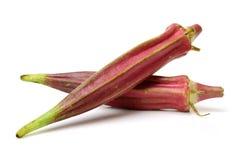 Красная бамия стоковые фото