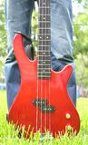 Красная басовая гитара на траве Стоковые Изображения