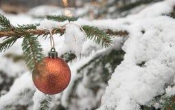 Красная безделушка орнамента рождества Beautyful яркого блеска haning на ели с снегом Стоковое Изображение