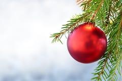 Красная безделушка рождества на зеленой ветви ели Стоковое фото RF