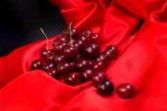 Красная большая вишня Стоковые Изображения