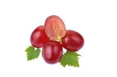 Красная виноградина при листья изолированные на белой предпосылке Стоковые Изображения