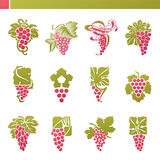 Красная виноградина с листьями. Комплект шаблона логоса вектора. Стоковая Фотография RF