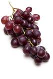 Красная виноградина на белой предпосылке Стоковое фото RF