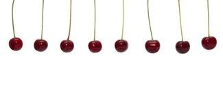 Красная вишня на белой предпосылке Стоковые Фото