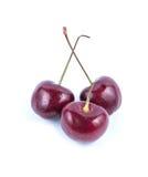 Красная вишня Стоковое Изображение RF