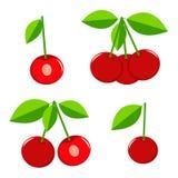 Красная вишня Стоковое Изображение