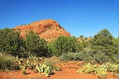 Красная горная порода в Sedona Аризоне стоковые изображения rf