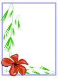 Красная граница Plumeria Стоковая Фотография