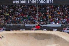 Красная грязь Bull завоевывает случай  Стоковые Изображения RF