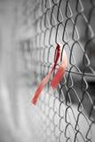 Красная лента на загородке звена цепи Стоковые Фотографии RF
