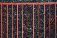 Красная загородка на зеленой стене дерева стоковое изображение