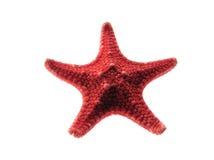 красная звезда Стоковые Фотографии RF