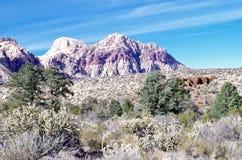 Красная зона консервации каньона утеса, Невада, США стоковые фото