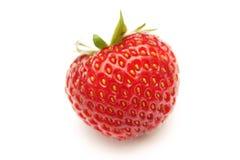 красная зрелая клубника Стоковое фото RF