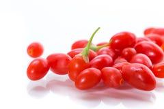Красная зрелая ягода goji на ветви изолированной на белизне стоковое фото
