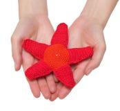 красная игрушка starfish Стоковая Фотография