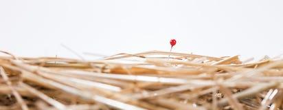 Красная игла в стоге сена Стоковое Фото