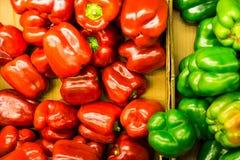 Красная и зеленая еда foor болгарского перца, красочная к еде Стоковые Фото