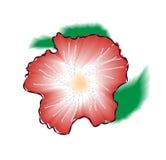 Красная иллюстрация вектора цветка гибискуса Стоковые Фотографии RF