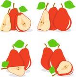 Красная иллюстрация груш Стоковая Фотография RF