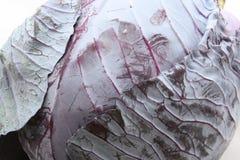 Красная капуста Стоковые Изображения