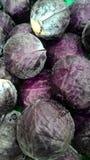Красная капуста стоковые фото