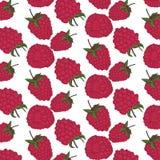 Красная картина ягоды Экзотическая текстура поленики лета Украшение ткани с плодоовощами Вегетарианский вектор еды орган Стоковое Фото