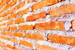 Красная кирпичная стена, наклон Селективный фокус Стоковые Фотографии RF