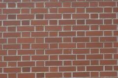 Красная кирпичная стена с белый grouting Стоковая Фотография RF