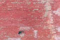 Красная кирпичная стена Стоковое Изображение RF